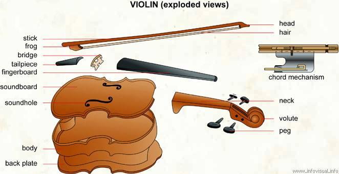要出國學小提琴的朋友請熟記